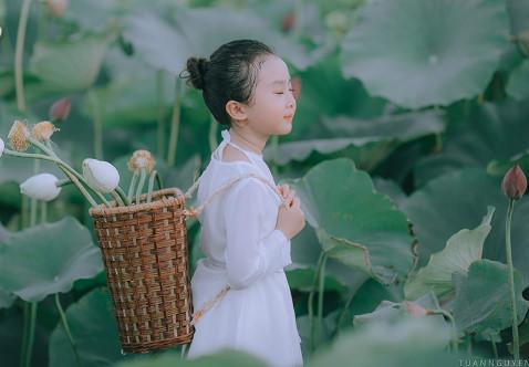 Bé gái xinh đẹp đáng yêu như 'Tiểu Long Nữ'  xuống ao sen đẹp mê hồn