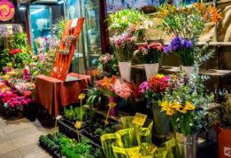 Shop bán hoa tươi ở Vinh địa chỉ bỏ túi của bạn.