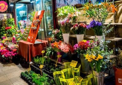 Shop bán hoa tươi tại Vinh một địa chỉ bỏ túi…