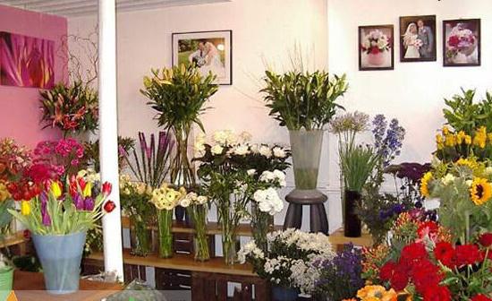 Shop bán hoa tươi ở Vinh  một địa chỉ bỏ túi cho các chi em khi có nhu cầu về hoa tươi.