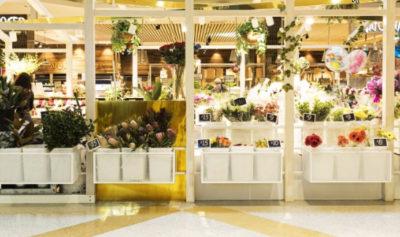 Hoa tươi Hà Tĩnh nên chọn shop nào.