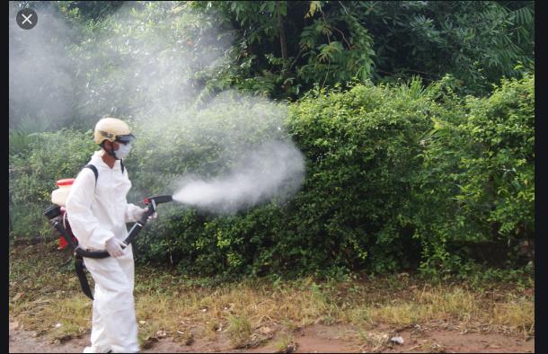 Diệt muỗi tại Hà Tĩnh